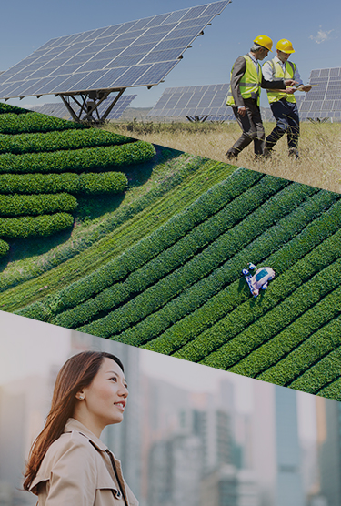 A collage of three photos: Two workers walking by solar panels in a rural landscape, an aerial view of a field of crops, and a businesswoman looking out at a city view.