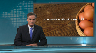 EDC Peter Hall: Is trade diversification worth it?